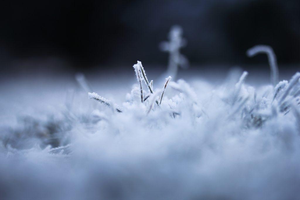 blur-blurred-background-carpet