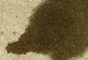 Ölfleck auf Teppich